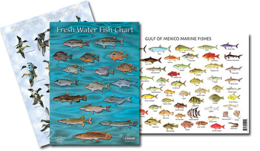 Wildlife Identification Charts