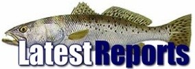 Latest fishing reports from www.northshorefishingreport.com